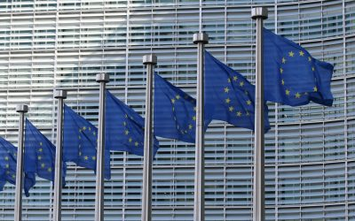 Nach den Europa-Wahlen