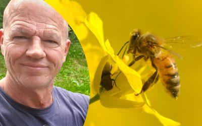 Gesunderhaltung der Bienen liberalisieren!